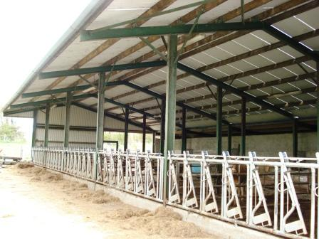 Designing cattle sheds cross plan for Farm shed plans